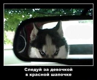Пикчи на автомобильную тему-x_01f76f01.jpg