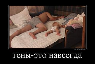 Повышатель настроения-x_4c07299f.jpg