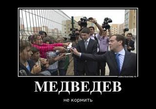 Повышатель настроения-5991818_medvedev.jpg
