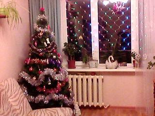 Новогодняя елка-img0002a.jpg