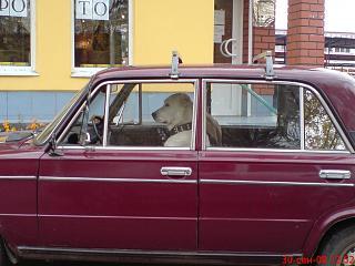 Пикчи на автомобильную тему-dsc01117.jpg