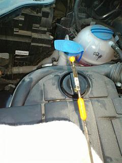 шприц или насос для отбора моторного  масла-dsc_1282.jpg