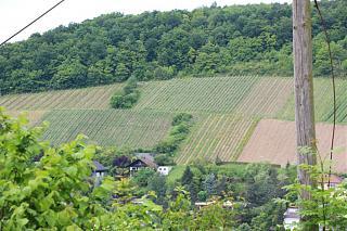 Вино-img_2862.jpg