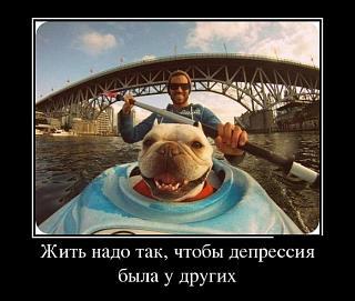 Братья наши меньшие-untitled1.jpg