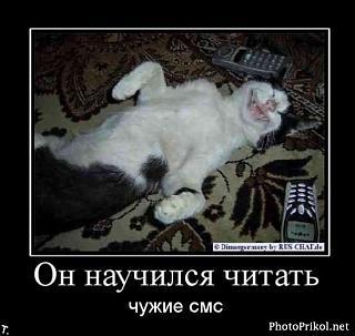 Братья наши меньшие-untitled2.jpg