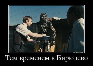 Политика-36932020_tem-vremenem-v-biryulevo.jpg