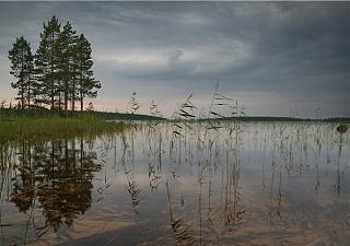 Красивые фотографии сделанные членами клуба-gray.jpg
