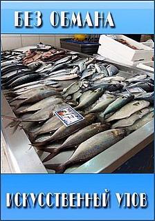 Всем любителям рыбы.-fsyfwq0.jpg