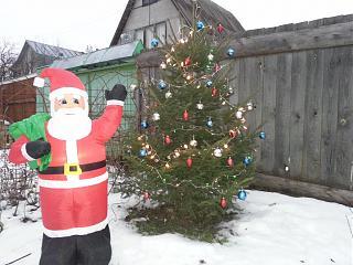 Новогодняя елка-20131230_171500.jpg