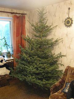 Новогодняя елка-img_0790.jpg