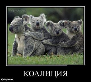 Братья наши меньшие-demotivatory410.jpg