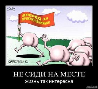 Политика-213.jpg