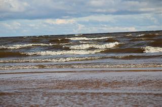 вылазки по Ленинградской области, но на Кайроне-img_4836.jpg