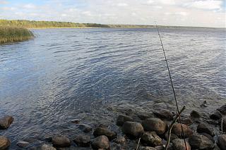 вылазки по Ленинградской области, но на Кайроне-img_9520.jpg