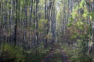 вылазки по Ленинградской области, но на Кайроне-img_9544.jpg