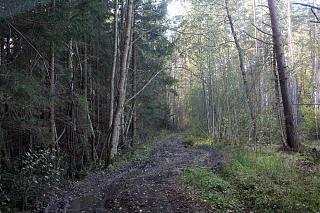 вылазки по Ленинградской области, но на Кайроне-img_9548.jpg
