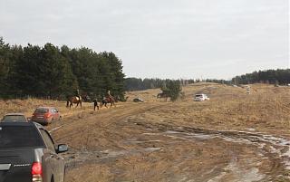 вылазки по Ленинградской области, но на Кайроне-img_1393.jpg