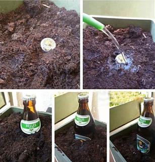 Пиво-pictures_74.jpg