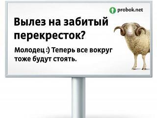 Свинство на дорогах-52d4d0daedb78.jpeg
