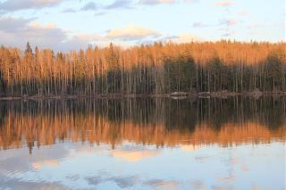вылазки по Ленинградской области, но на Кайроне-img_1983.jpg