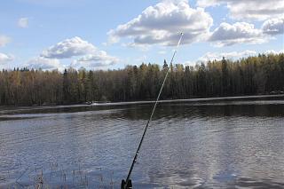 вылазки по Ленинградской области, но на Кайроне-img_2051.jpg