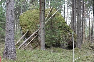 вылазки по Ленинградской области, но на Кайроне-img_2083.jpg