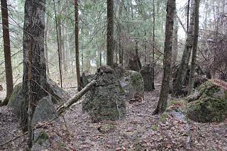 вылазки по Ленинградской области, но на Кайроне-img_2183-kopiya.jpg