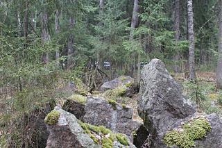 вылазки по Ленинградской области, но на Кайроне-img_2224.jpg