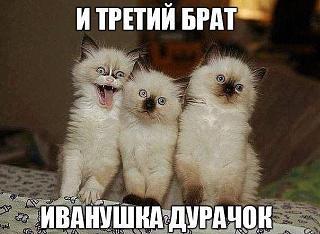 Повышатель настроения-geti2mage.jpeg