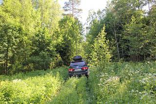 вылазки по Ленинградской области, но на Кайроне-img_2357.jpg