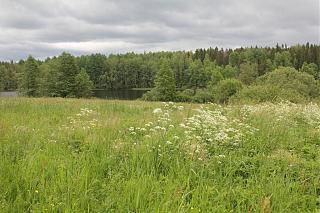 вылазки по Ленинградской области, но на Кайроне-img_2783.jpg