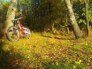 покупаем велосипед !-20141002_174942.jpg