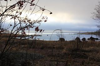 вылазки по Ленинградской области, но на Кайроне-img_7536.jpg