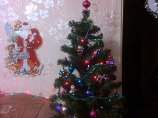 Новогодняя елка-img_20141207_160530.jpg