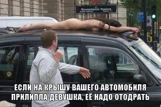 Повышатель настроения-prilipla-devushka.jpeg