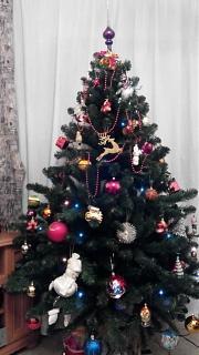 Новогодняя елка-img_20141231_002314.jpg