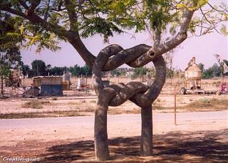Это интересно...-creativing.net_strangest_tree_farm_002.jpg