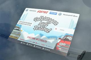 VW & Audi Festival 2015-7.jpg