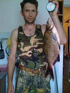 Рыбалка, новости с водоёмов.-img_20150809_112823.jpg
