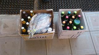 Пиво-dsc_1070.jpg