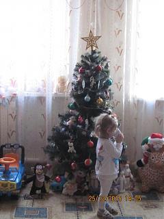 Новогодняя елка-img_0181.jpg