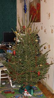 Новогодняя елка-dsc05110.jpg