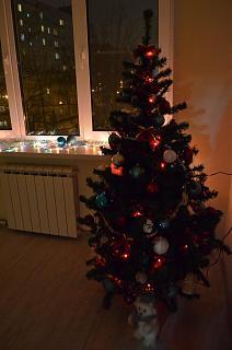 Новогодняя елка-dsc_1597.jpg