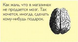 Повышатель настроения-mozg.jpg