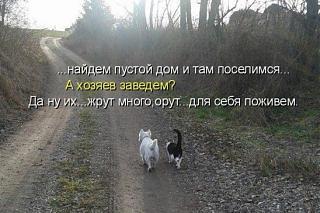 Повышатель настроения-image-7-.jpg