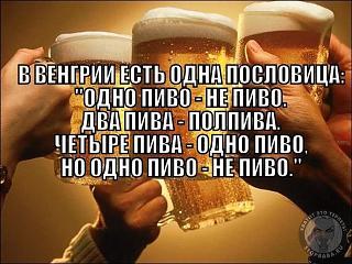 Пиво-1407495030_podborka_90.jpg
