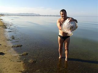 Рыбалка, новости с водоёмов.-kam1.jpg