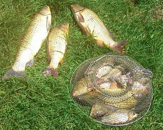 Рыбалка, новости с водоёмов.-001.jpg