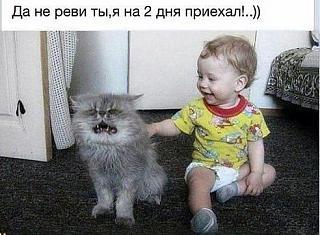 Повышатель настроения-image-10-.jpg