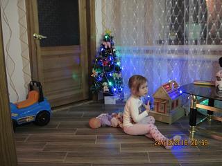 Новогодняя елка-img_0435.jpg